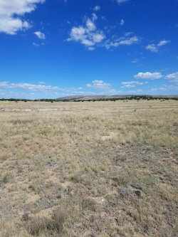 Photo of Lot 108 Constitution Pass, Seligman, AZ 86337 (MLS # 1016242)