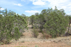 Photo of 1413, 1412 Sierra Verde Ranch, Seligman, AZ 86337 (MLS # 1023482)