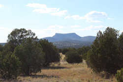 Photo of Lot 782 Painted Horse Trail, Seligman, AZ 86337 (MLS # 1023617)