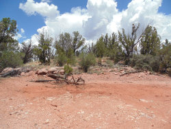 Photo of Lot 31 Forest Acres, Seligman, AZ 86337 (MLS # 1023893)