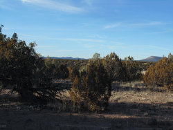 Photo of 612 Sierra Verde Ranch, Seligman, AZ 86337 (MLS # 1023927)