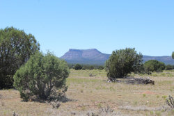 Photo of Lot 573 Spooky Owl, Seligman, AZ 86337 (MLS # 1024119)