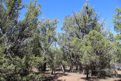 Photo of Lot 271 High Sierra, Seligman, AZ 86337 (MLS # 1024120)