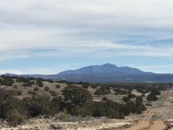 Photo of 215 Off Of Couchman, Ash Fork, AZ 86320 (MLS # 1025750)