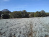 Photo of Lot 67/68 Juniperwood Ranch, Ash Fork, AZ 86320 (MLS # 1026939)