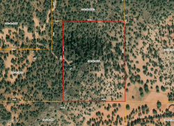 Photo of Lot 505 Juniper Hills Unit 2, Ash Fork, AZ 86320 (MLS # 1027415)