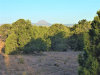 Photo of 474 Cattle Drive, Ash Fork, AZ 86320 (MLS # 1027576)