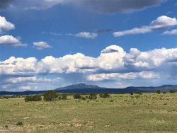 Photo of 64 E2 Off Of Old Hwy 66, Ash Fork, AZ 86320 (MLS # 1028368)