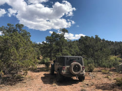 Photo of 107 Off Of Un Named Rd, Ash Fork, AZ 86320 (MLS # 1032488)