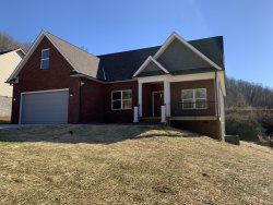 Photo of 418 Brookstone Ridge Drive, Clinton, TN 37716 (MLS # 1030532)
