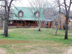 Photo of 2993 Old Dixie Hwy, Evensville, TN 37332 (MLS # 1031117)