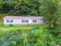 Photo of 1275 Cool Branch Rd, Sneedville, TN 37869 (MLS # 1037285)