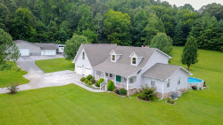 Photo of 150 Goldenrod Lane, Friendsville, TN 37737 (MLS # 1038026)