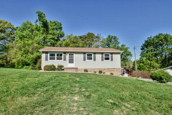 Photo of 1734 Parkridge Drive, Knoxville, TN 37924 (MLS # 1038558)