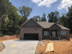 Photo of 477 Krystle Court, Lenoir City, TN 37771 (MLS # 1051461)