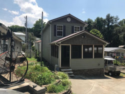 Photo of 566 Flamino Circle, Townsend, TN 37882 (MLS # 1051627)