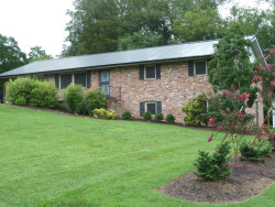 Photo of 313 Forge Ave, Pigeon Forge, TN 37863 (MLS # 1052280)
