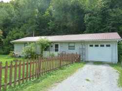 Photo of 845 E Wolf Valley Rd, Heiskell, TN 37754 (MLS # 1052406)