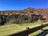 Photo of 1081 Cove Rd Unit 913, Sevierville, TN 37876 (MLS # 1062526)
