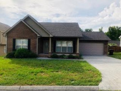 Photo of 375 Hillside Lane, Lenoir City, TN 37771 (MLS # 1062766)
