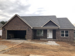 Photo of 635 Carrington Blvd, Lenoir City, TN 37771 (MLS # 1063572)