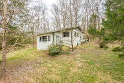 Photo of 4424 Island Home Pike, Knoxville, TN 37920 (MLS # 1066632)