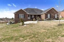Photo of 3156 Sagegrass Drive, Louisville, TN 37777 (MLS # 1068443)