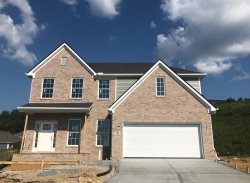 Photo of 702 Rindlewood Lane, Maryville, TN 37801 (MLS # 1068571)