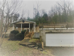 Photo of 4287 Cub Drive, Louisville, TN 37777 (MLS # 1069493)