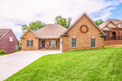 Photo of 998 Britts Drive, Lenoir City, TN 37772 (MLS # 1075681)