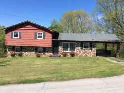Photo of 411 Dogwood Drive, Harriman, TN 37748 (MLS # 1076105)
