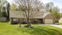 Photo of 2271 Argonne Drive, Maryville, TN 37804 (MLS # 1076624)