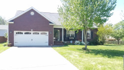 Photo of 805 Micah St, Maryville, TN 37804 (MLS # 1076851)