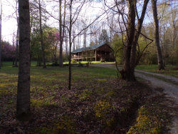 Photo of 250 Grapevine Rd, Crossville, TN 38555 (MLS # 1076866)
