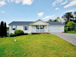 Photo of 2907 Windsock Lane, Knoxville, TN 37924 (MLS # 1078369)