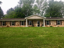 Photo of 241 Greenwood Drive, Harriman, TN 37748 (MLS # 1079311)