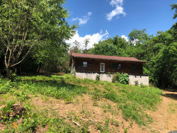 Photo of 1436 Jaybird Rd, Morristown, TN 37814 (MLS # 1081277)