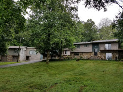 Photo of 1740 Maplecrest Drive, Louisville, TN 37777 (MLS # 1083226)