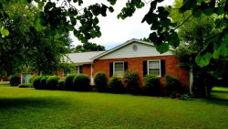 Photo of 4601 Millertown Pike, Knoxville, TN 37917 (MLS # 1088160)