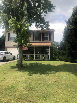 Photo of 917 Rose Petal Lane, Knoxville, TN 37938 (MLS # 1088232)
