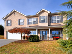 Photo of 1247 Long Leaf Lane, Knoxville, TN 37932 (MLS # 1102464)