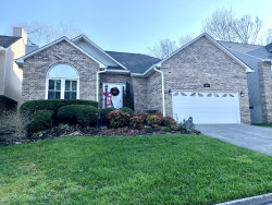 Photo of 8517 E Cypress Lake Drive, Knoxville, TN 37923 (MLS # 1102552)