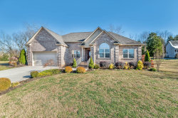 Photo of 1730 Arrowhead Blvd, Maryville, TN 37801 (MLS # 1102701)