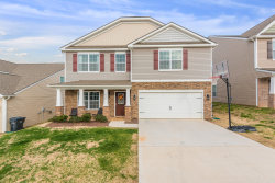 Photo of 2339 Mccampbell Wells Way, Knoxville, TN 37924 (MLS # 1105982)