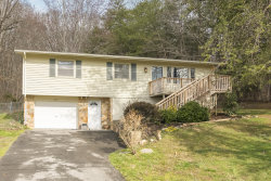 Photo of 6861 Langston Drive, Knoxville, TN 37918 (MLS # 1108710)