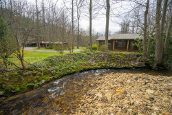 Photo of 1548 Turkey Creek Rd, Tellico Plains, TN 37385 (MLS # 1111888)