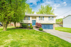 Photo of 1720 Campfire Drive, Knoxville, TN 37931 (MLS # 1113514)