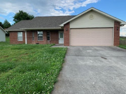 Photo of 1448 Chessingham Drive, Maryville, TN 37801 (MLS # 1118157)
