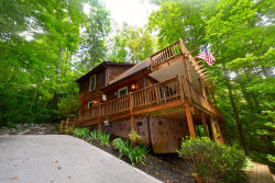 Photo of 319 Settlers View Road Rd, Townsend, TN 37882 (MLS # 1122949)