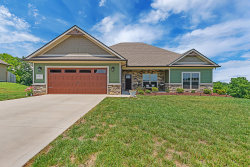 Photo of 1442 Sally View Drive, Friendsville, TN 37737 (MLS # 1123706)